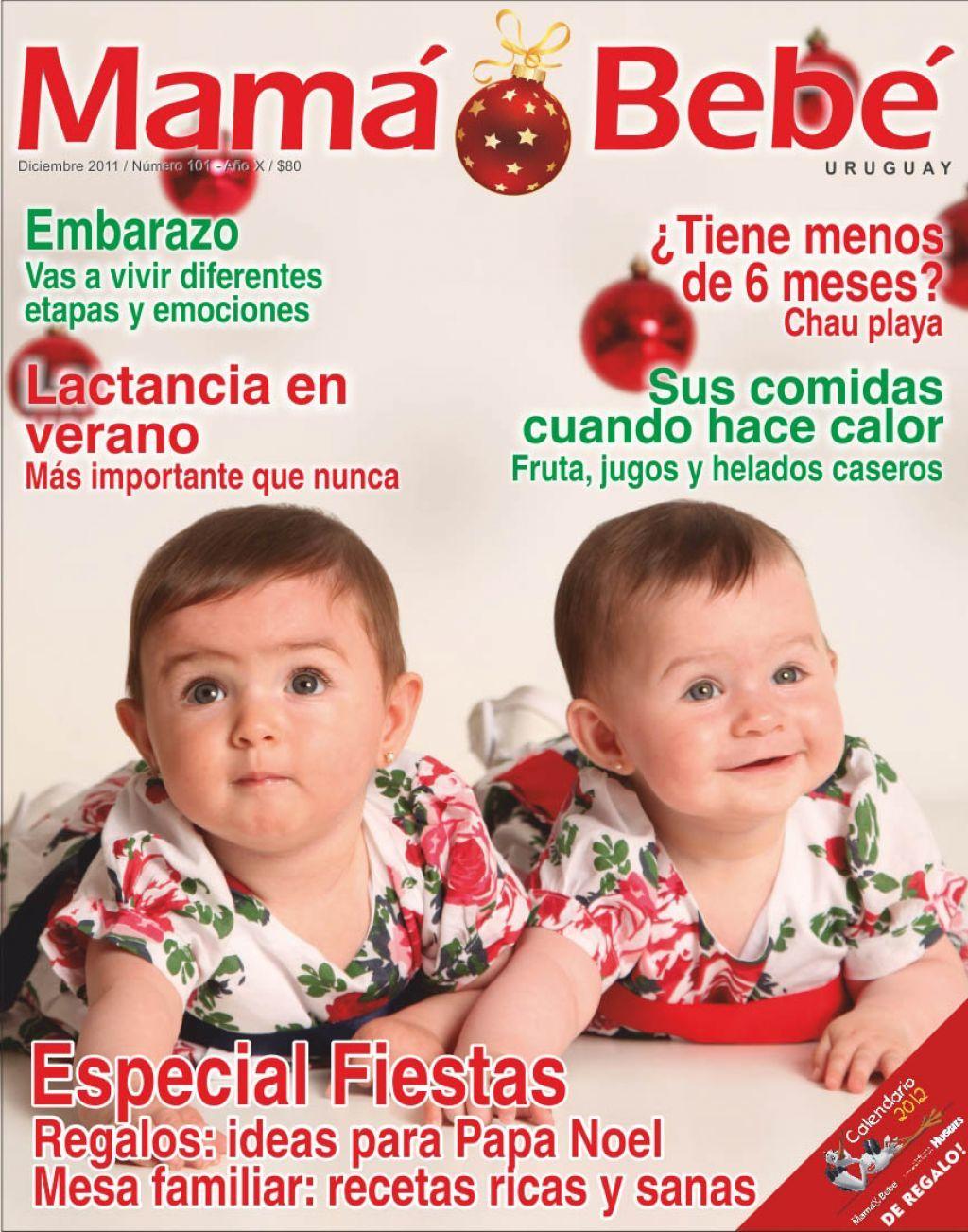 Edición Diciembre Nº101 Edición Diciembre Nº101